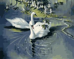 Фото Картины на холсте по номерам, Животные. Птицы. Рыбы... Картина по номерам в коробке Babylon Пара лебедей 40х50см (VP 233)