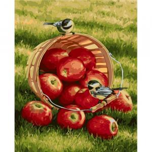 Фото Картины на холсте по номерам, Картины  в пакете (без коробки) 50х40см; 40х40см; 40х30см, Цветы, букеты, натюрморты Картина по номерам без коробки Идейка Хрустящие яблочки40х50см (KHO 2469)