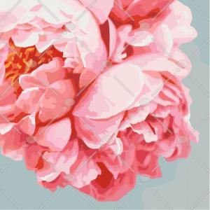Фото Картины на холсте по номерам, Картины  в пакете (без коробки) 50х40см; 40х40см; 40х30см, Цветы, букеты, натюрморты Картина по номерам без коробки Идейка Розовые пионы 40х40см (KHO 3035)