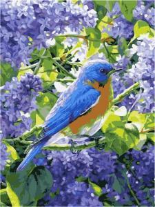 Фото Картины на холсте по номерам, Животные. Птицы. Рыбы... Картина по номерам в коробке Babylon Весенняя интерлюдия 40x30см (VK 220)