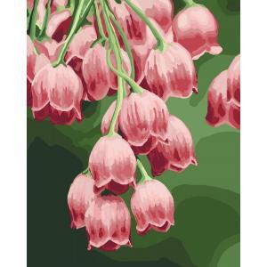 Фото Картины на холсте по номерам, Картины  в пакете (без коробки) 50х40см; 40х40см; 40х30см, Цветы, букеты, натюрморты Картина по номерам без коробки Идейка Замечательные колокольчики 40х50см (KHO 3040)
