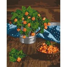 Фото Картины на холсте по номерам, Картины  в пакете (без коробки) 50х40см; 40х40см; 40х30см, Цветы, букеты, натюрморты Картина по номерам без коробки Идейка Царские ягоды 40х50см (KHO 5575)