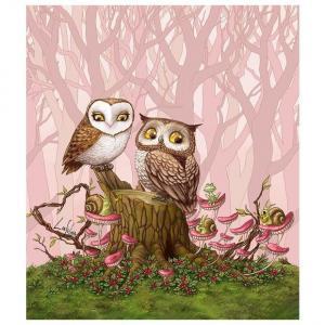Фото Картины на холсте по номерам, Животные. Птицы. Рыбы... Картина по номерам в коробке  Paintboy Влюбленные совы 40х50см (KGX 21684)