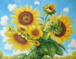 Фото Картины на холсте по номерам, Букеты, Цветы, Натюрморты Картина по номерам в коробке Paintboy Подсолнух 40х50см (KGX 8781)