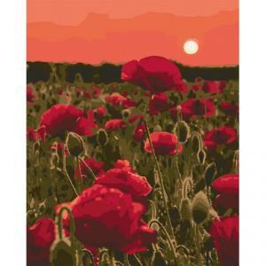 Фото Картины на холсте по номерам, Картины  в пакете (без коробки) 50х40см; 40х40см; 40х30см, Пейзаж, морской пейзаж. Картина по номерам без коробки Идейка Маковая поляна 40х50см (KHO 3579)