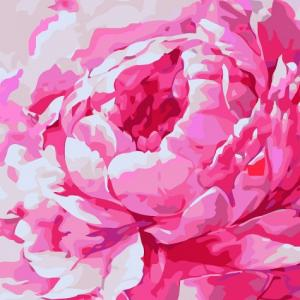 Фото Картины на холсте по номерам, Картины  в пакете (без коробки) 50х40см; 40х40см; 40х30см, Цветы, букеты, натюрморты Картина по номерам без коробки Идейка Розовый пион 2 30х30см (KHO 2949)