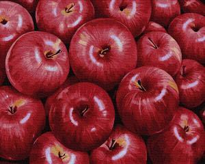 Фото Картины на холсте по номерам, Букеты, Цветы, Натюрморты Картина по номерам в коробке Paintboy Красные яблоки 40х50см (KGX 34602)