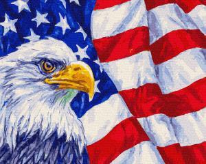 Фото Картины на холсте по номерам, Городской пейзаж Картина по номерам без коробки Paintboy Символы США 40х50см (GX 35007)