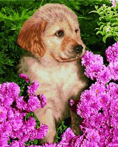 Фото  GZS 1033 Щенок лабрадора в цветах Алмазная картина-раскраска (смешанная техника)
