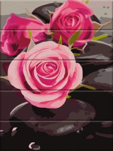 Фото  ASW 081 Розы на камнях Картина по номерам на дереве 30х40 см