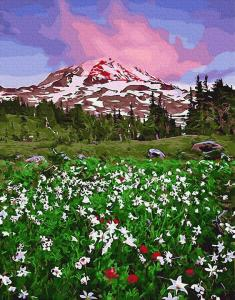Фото Наборы для вышивания, Вышивка крестом с нанесенной схемой на конву, Пейзаж KGX 29236 Цветочная долина акварелью Картина по номерам на холсте 40х50см