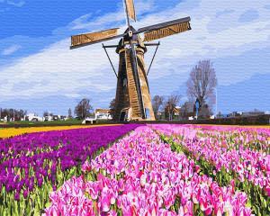 Фото Наборы для вышивания, Вышивка крестом с нанесенной схемой на конву, Пейзаж KGX 29433 Голландская мельница Картина по номерам на холсте 40х50см