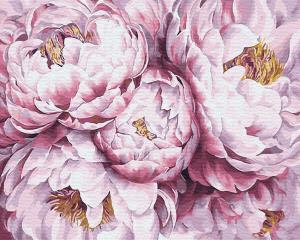 Фото Картины на холсте по номерам, Букеты, Цветы, Натюрморты Картина по номерам в коробке Paintboy Пионы 40х50см (KGX 29483)