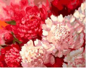 Фото Картины на холсте по номерам, Букеты, Цветы, Натюрморты Картина по номерам в коробке Paintboy Контрастные пионы 40х50см (KGX 25609)