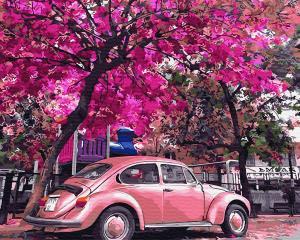 Фото Картины на холсте по номерам, Городской пейзаж Картина по номерам без коробки Paintboy Цветущая парковка 40х50см (GX 32366)