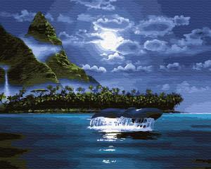 Фото Картины на холсте по номерам, Картины  в пакете (без коробки) 50х40см; 40х40см; 40х30см, Пейзаж, морской пейзаж. Картина по номерам без коробки Paintboy Лунная ночь 40х50см (GХ 33220)