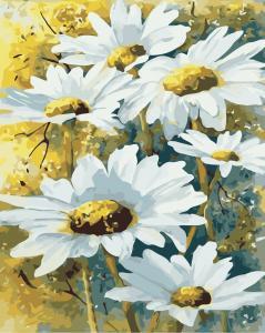 Фото Картины на холсте по номерам, Букеты, Цветы, Натюрморты Картина по номерам в коробке ArtStory Полевые ромашки 40x50см (AS 0840)