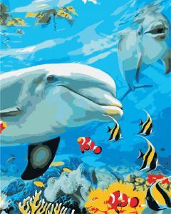 Фото Картины на холсте по номерам, Животные. Птицы. Рыбы... Картина по номерам в коробке ArtStory Улыбка дельфина 40x50см (AS 0868)