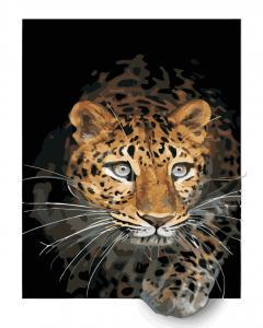 Фото Картины на холсте по номерам, Животные. Птицы. Рыбы... Картина по номерам в коробке ArtStory Ягуар 40x50см (AS 0885)