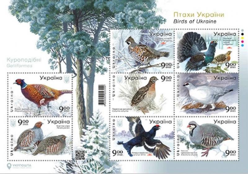 Фото Почтовые марки Украины, Почтовые марки Украины 2021  год  2021 № 1930–1937 (b-34) поштові марки в аркуші «Птахи України. Куроподібні».