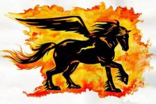 "логотип Склад Магазин ""ПЕГАС"""