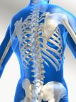 логотип Денситометрия. Диагностика остеопороза в Запорожье