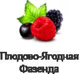 "логотип Интернет магазин семян и саженцев ""МалинМагнат"""
