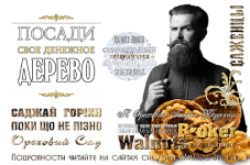 логотип Walnuts Broker