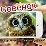 логотип Интернет-магазин Совенок